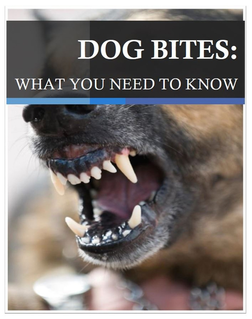 Dog Bites: What You Need to Know